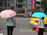 雨傘の日傘