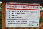 2006061005.jpg